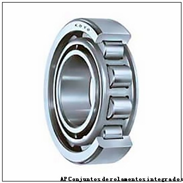 Axle end cap K86877-90010 Backing ring K86874-90010        Conjuntos de rolamentos integrados AP